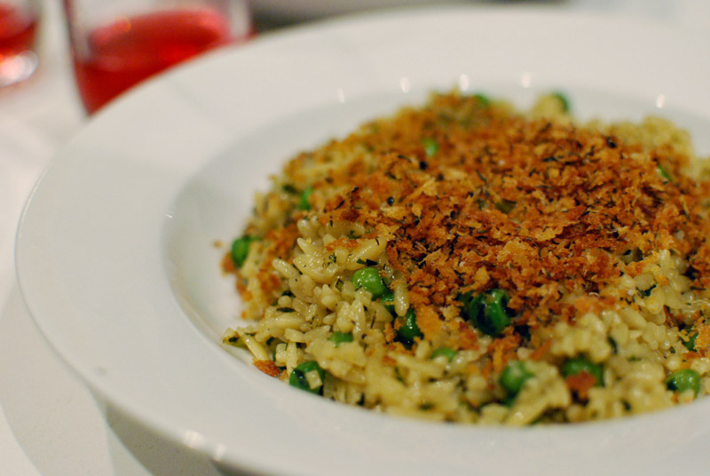 orzo limone with peas and breadcrumbs